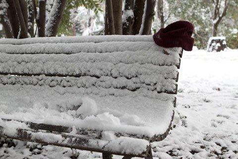Villa Sciarra e la neve