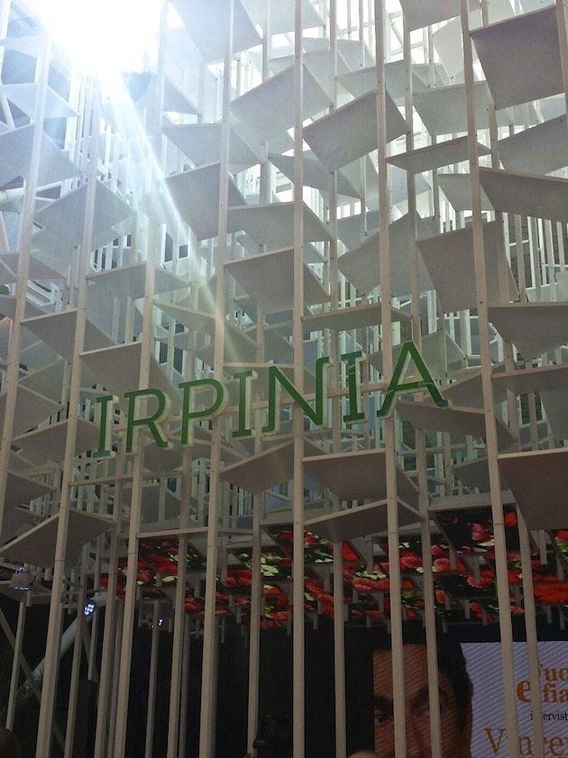Irpinia, Expo 2015 ed io
