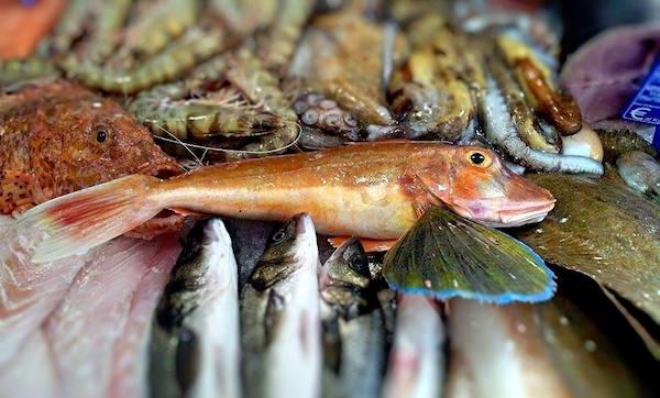 Pescatoria di Livello 1